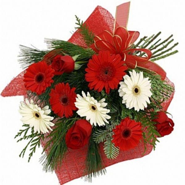 Gerbera çiçeği ile ilgili görsel sonucu